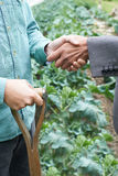 Фермер и бизнесмен тряся руки Стоковое Изображение