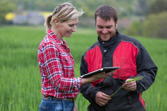 Фермер и техник работая вместе с электроникой Стоковые Изображения RF