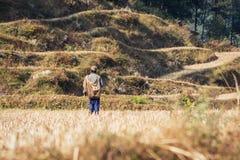 Фермер на рисе fields на треке базового лагеря Annapurna, Непале стоковое изображение rf