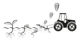 Фермер осеменяя урожаи на поле Стоковая Фотография