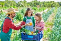 Фермер показывая овощам сбор к девушкам ребенк Стоковое Фото
