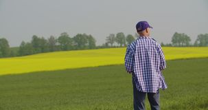 Фермер работая на земледелии фермы видеоматериал