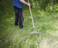 Фермер собирает траву грабл весной Стоковая Фотография