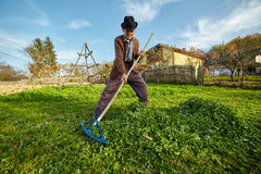 Фермер собирая траву для того чтобы подать животные Стоковое Изображение RF
