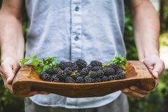 Фермер с ежевиками свежие фрукты органические стоковые фотографии rf