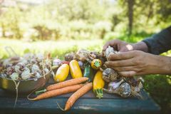 Фермер с овощами Стоковое Фото