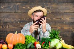 Фермер с органическими доморощенными овощами r Сады и фермы общины Доморощенные натуральные продукты стоковые изображения