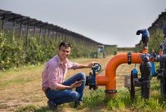 Фермер с таблеткой около полива пускает по трубам в яблоневом саде стоковое фото rf
