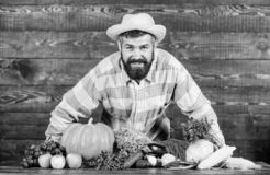 Фермер человека бородатый с предпосылкой загородного стиля овощей i По месту, который выросли концепция урожаев стоковое фото rf