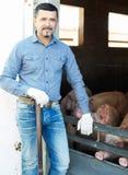 Фермер человека стоя в свинарнике Стоковые Изображения