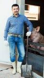 Фермер человека стоя в свинарнике Стоковое Изображение