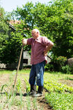Фермер стоковое изображение