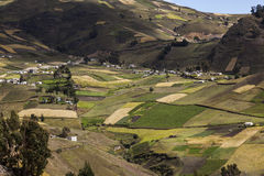 Фермы и урожаи Zumbahua стоковое изображение