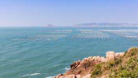 Фермы моллюска Стоковая Фотография RF