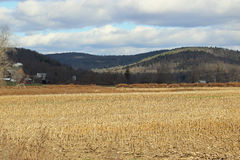 2 фермы Стоковое Изображение