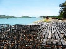 Фермы Pearling острова пятницы Стоковые Изображения RF