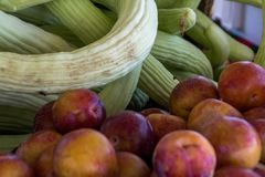 Ферм-свежие овощи на рынке фермера Стоковые Фото