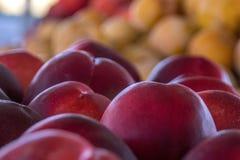 Ферм-свежие сливы на рынке фермера Стоковое Изображение