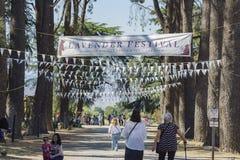 Фестиваль лаванды на ферме 123 Стоковые Изображения