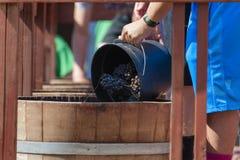 Фестиваль сбора толкотни вина в Carlton Орегоне Стоковая Фотография RF