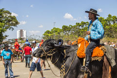 Фестиваль культуры положения Revelando São Paulo - Сан-Паулу традиционный Стоковые Фото