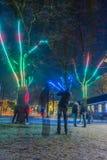 Фестиваль 2016-2017 Нидерландов - Амстердама - света Амстердама Стоковые Фото