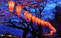 Фестиваль просмотра вишневого цвета (‹ŠèŠ±è¦  ã) Стоковое фото RF