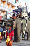 Фестиваль слона в Surin Стоковые Фото