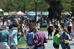 Фестиваль тюльпана в Albany, штат Нью-Йорк Стоковые Фотографии RF