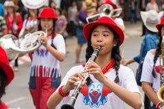 Фестиваль цветка Чиангмая Стоковая Фотография
