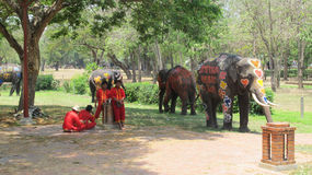Фестиваль Songkran отпразднован с слонами в Ayutthaya Стоковое Фото