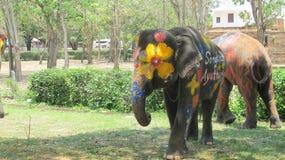 Фестиваль Songkran отпразднован с слонами в Ayutthaya Стоковые Изображения