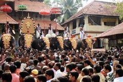 Фестиваль Thrissur Pooram стоковое фото rf