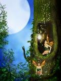 Фея в лесе фантазии Стоковое фото RF