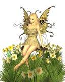 фе daffodil иллюстрация штока