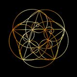 Фибоначчи закручивает в спираль священная геометрия на черноте бесплатная иллюстрация