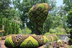 Фигурная стрижка кустов змейки Стоковое Фото