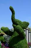 Фигурная стрижка кустов слона на Epcot Стоковые Изображения RF