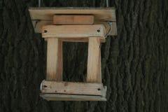 Фидеры птицы на дереве Стоковые Изображения RF