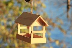 Фидеры птицы на дереве Стоковое фото RF