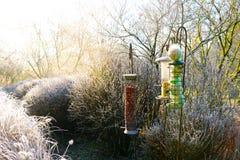 Фидеры птицы со смешанными семенами в красивом саде во время замороженной зимы стоковые изображения