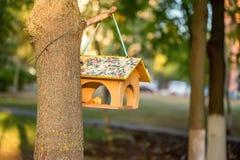 Фидер дома птиц Стоковые Фотографии RF