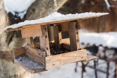 Фидер птицы с семенами подсолнуха в зиме Стоковое Изображение RF