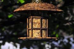 фидер птицы Стоковое Изображение
