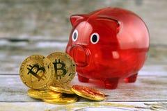 Физическая версия денег и копилки Bitcoin новых виртуальных Стоковые Изображения RF
