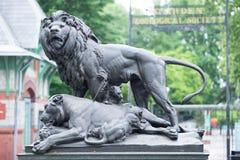 ФИЛАДЕЛЬФИЯ, PA - 30-ОЕ МАЯ: Зоопарк Филадельфии, зоопарк ` s первого Amercia стоковое фото rf