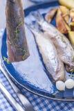 Филе сельдей в женской руке, испеченной в картошках печи и соленьях и луках Очень вкусная традиционная еда Голландии голландско стоковые фото