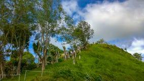 Филиппинские холмы шоколада Bohol стоковые фотографии rf
