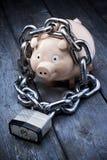 Финансовая обеспеченность Piggybank   Стоковая Фотография