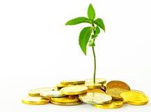Финансовохозяйственная стратегия. стоковые изображения rf